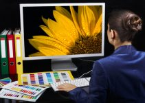 Best Monitors For Digital Artist Work in 2021